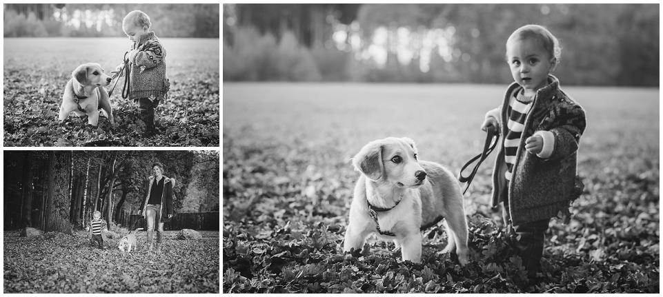 Herbst, Kind, Familie, Hund, Wald, Dreiländerpunkt, Aachen, Vaals, Astrid Ebert Fotografie